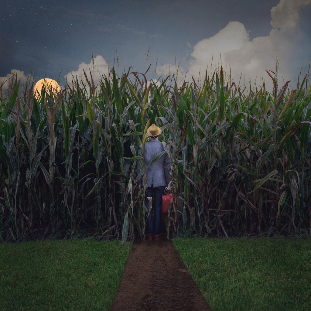 Logan Zillmer The Traveller corn